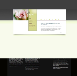 Bodensee-Design Referenz Website All-Spirit